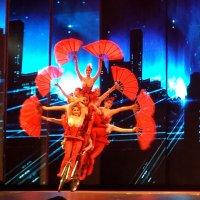 Show de acróbatas chinos